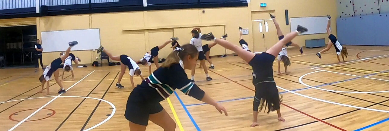 Capoeira Proactivity Header